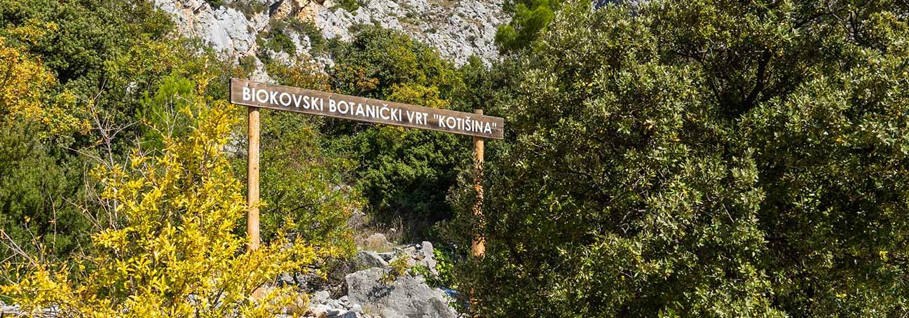 Posjetite jedan od najljepših botaničkih vrtova u Hrvatskoj – Botanički vrt Kotišina